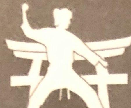 Shotokan Karate Dojo Seeheim – Flyer